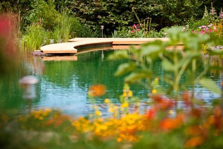 jetzt informieren swimming teich und living pool aqua. Black Bedroom Furniture Sets. Home Design Ideas